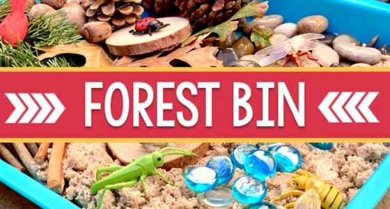 Forest Theme Sensory Bin for Preschool