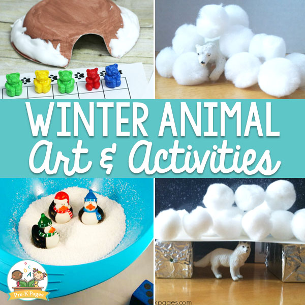 animals in winter activities
