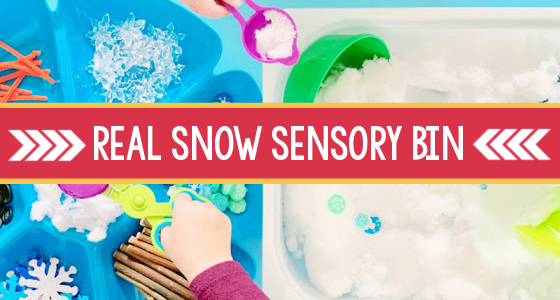 Winter Sensory Bin with Real Snow