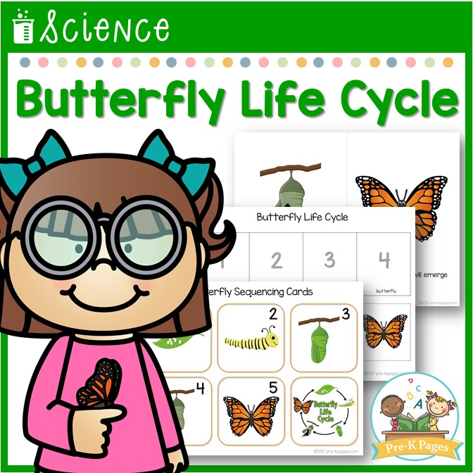 Butterfly Life Cycle Science Lesson