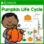 Pumpkin Life Cycle Science Lesson
