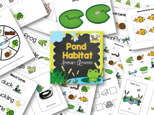 Printable Pond Theme Literacy Activities for Small Group in Pre-K or Kindergarten