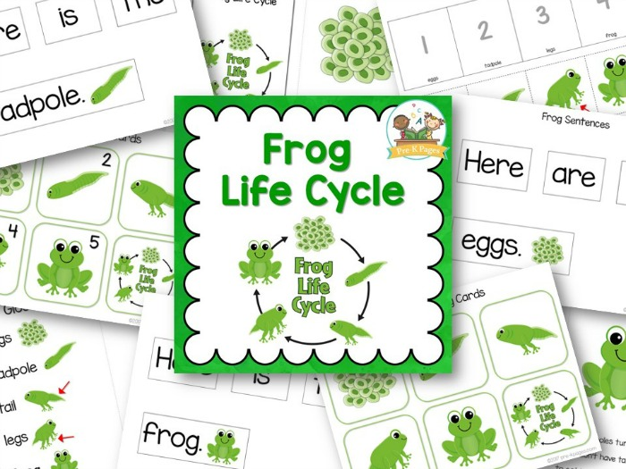 Frog Life Cycle Printables