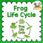 Frog Life Cycle Printables for Kindergarten