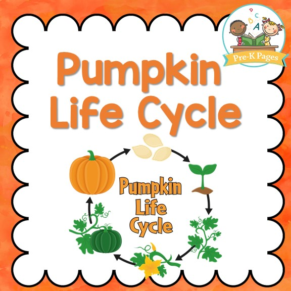 Pumpkin Life Cycle Activities for Preschool