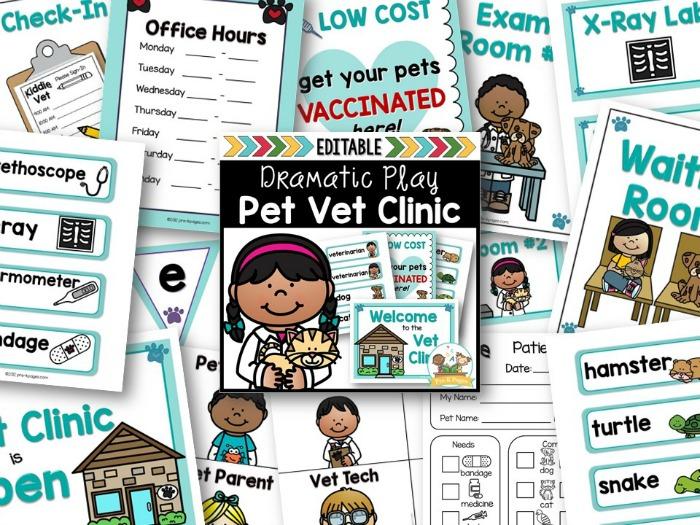 Vet Clinic Dramatic Play Kit