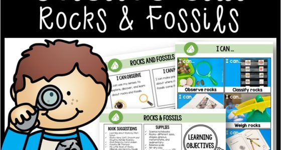 Rocks and Fossils Science Unit