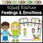 Feelings and Emotions Visual Supports