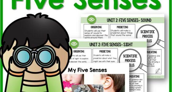 Science Unit: 5 Senses